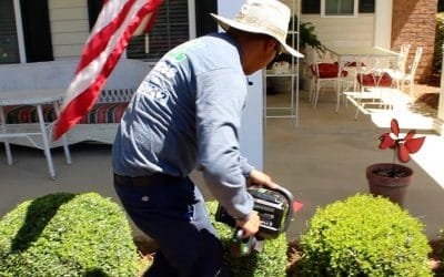 Can Landscapers Save America? – Part 2 – Their Responses